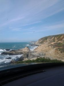 Bodega Head, California