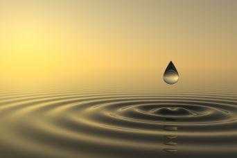 zen-drop.jpg